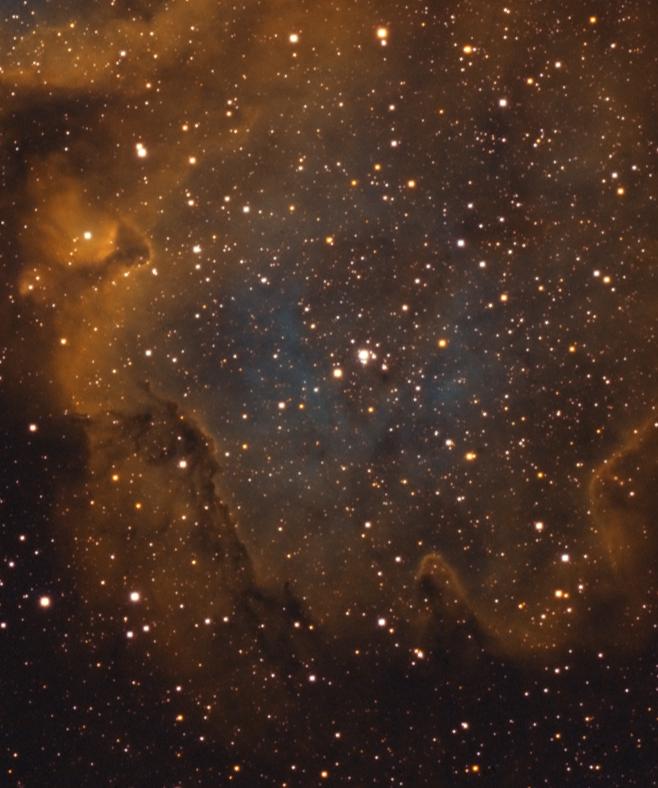 IC-1848-Crop-3
